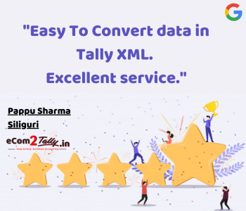 ecommerce to tally_review 3